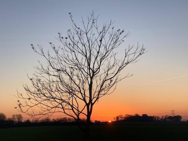 1001 ide es aime la nature et la plane te